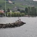 Посмотреть альбом «13 июля 2014 г. Швейцария. Виноградники Лаво»