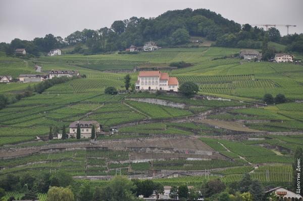 Кюлли находится в самом центре региона Лаво, известного своими уникальными виноградниками, расположенными на склонах гор. За это Лаво даже попал в список Всемирного наследия ЮНЕСКО