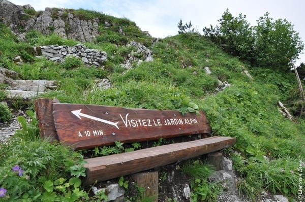 В-третьих, недалеко расположен небольшой альпийский парк