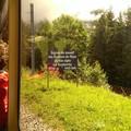 Посмотреть альбом «13-14 июля 2014 г. Швейцария. Монтрё. Роше-де-Нэ»